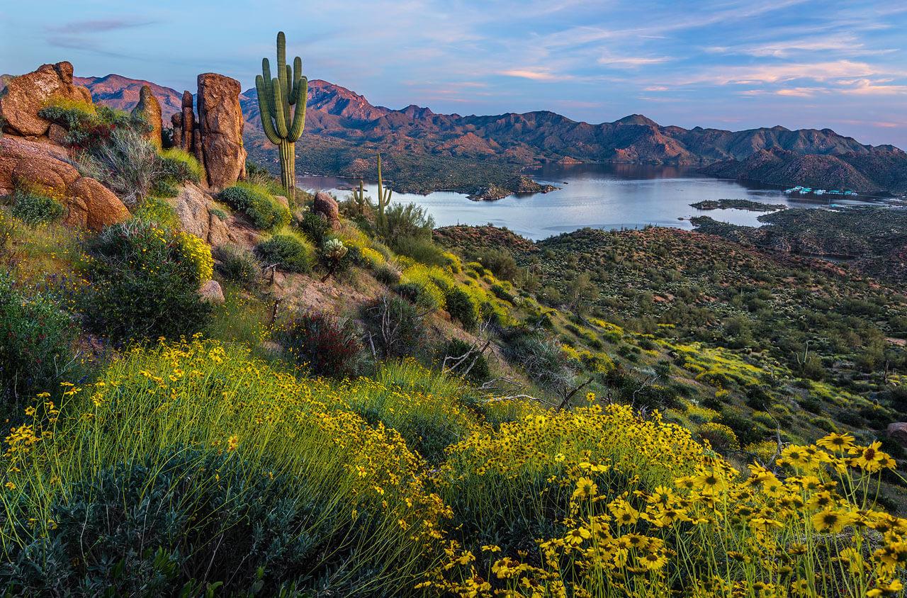 Bartlett Lake near Phoenix.