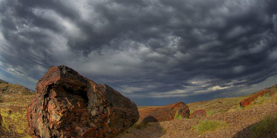 A fish-eye shot of a petrified log and a dark cloudy sky.