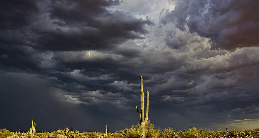 10 Facts You Didn't Know About Monsoons
