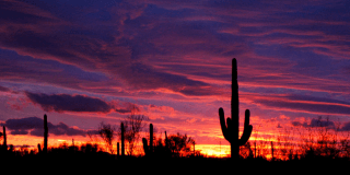 10 Arizona Sunsets We *Definitely* Don't Care About