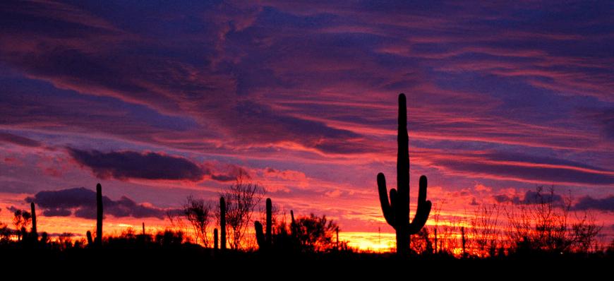 10 Arizona Sunsets We *Definitely* Don't Care About