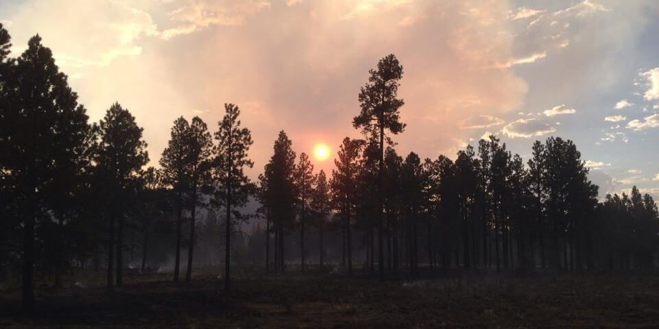 Flickr User Apache-Sitgreaves National Forest