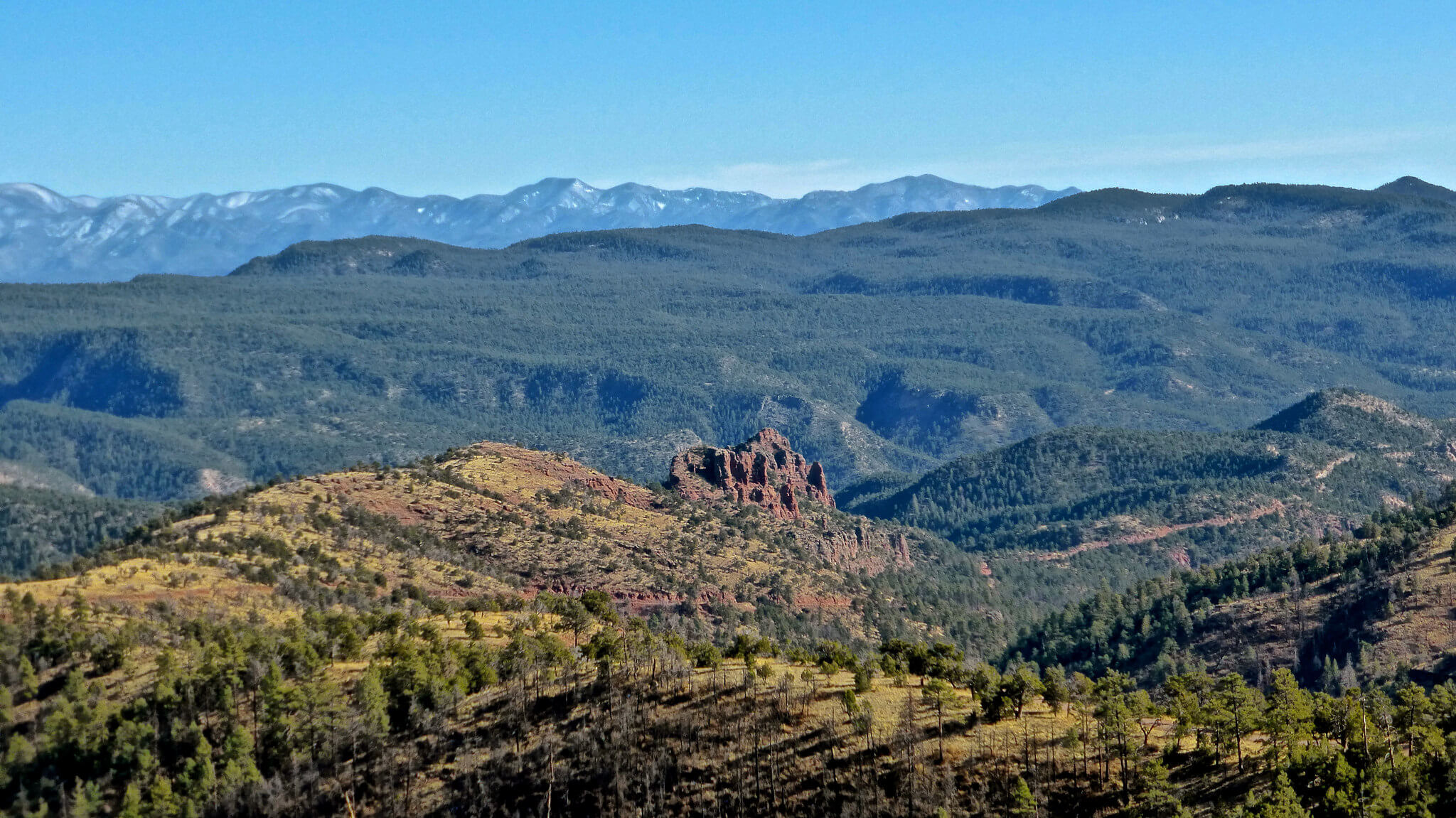 10 Facts About Apache-Sitgreaves National Forest