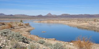 10 Reasons You Should Visit Alamo Lake State Park
