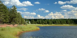 5 Cool Facts About Fool Hollow Lake Recreation Area