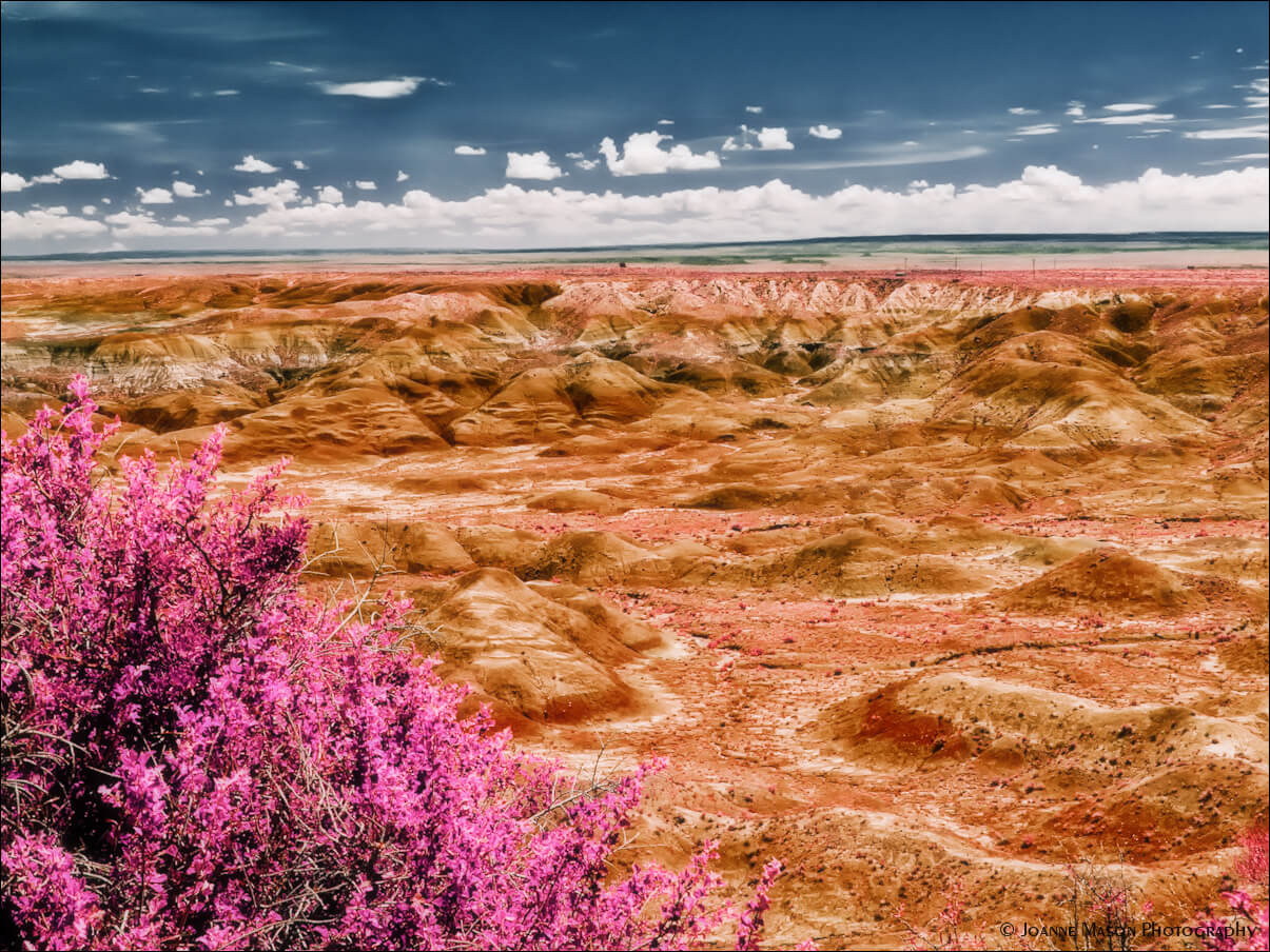 10 Facts About Arizona's Painted Desert