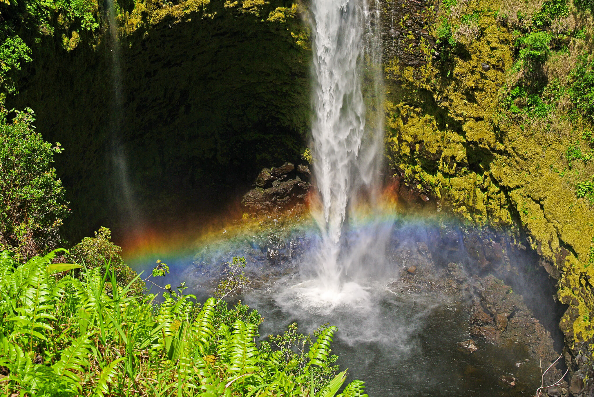 Akaka Falls in Hawaii. Flickr User Rita Jo