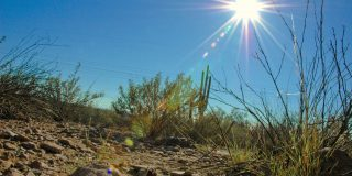 12 Tips For Keeping Cool in the Scorching Arizona Heat