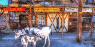5 Reasons You Need to Visit the Small Town of Oatman, AZ
