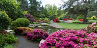 When in Seattle, Washington You Simply Must Visit This Garden
