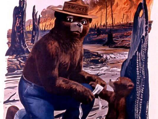 Smokey Bear - Photo courtesy of USA Today