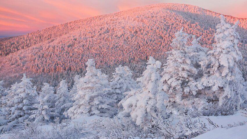 http://lightofthewild.photoshelter.com/gallery-image/Blue-Ridge