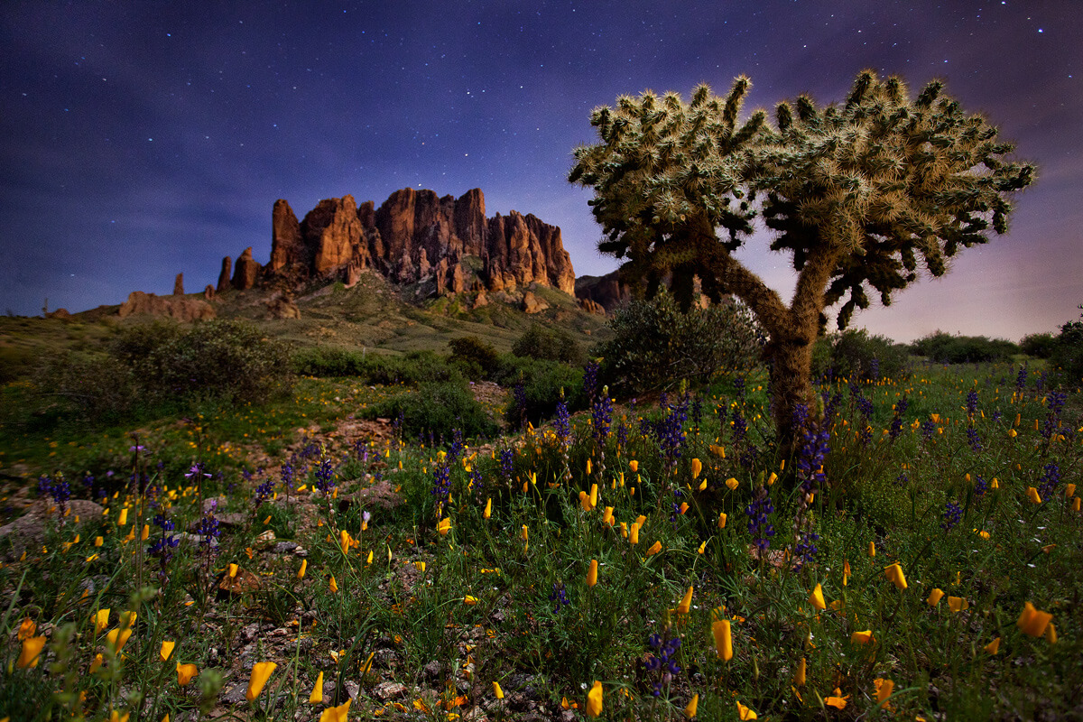 What These 8 Photographers Captured In Arizona Will Blow You Away.