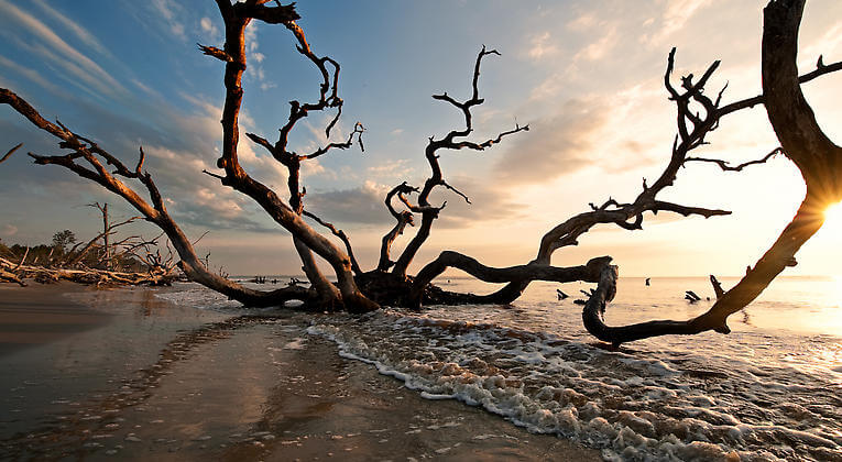 What These 6 Photographers Captured In North Carolina Will Blow You Away