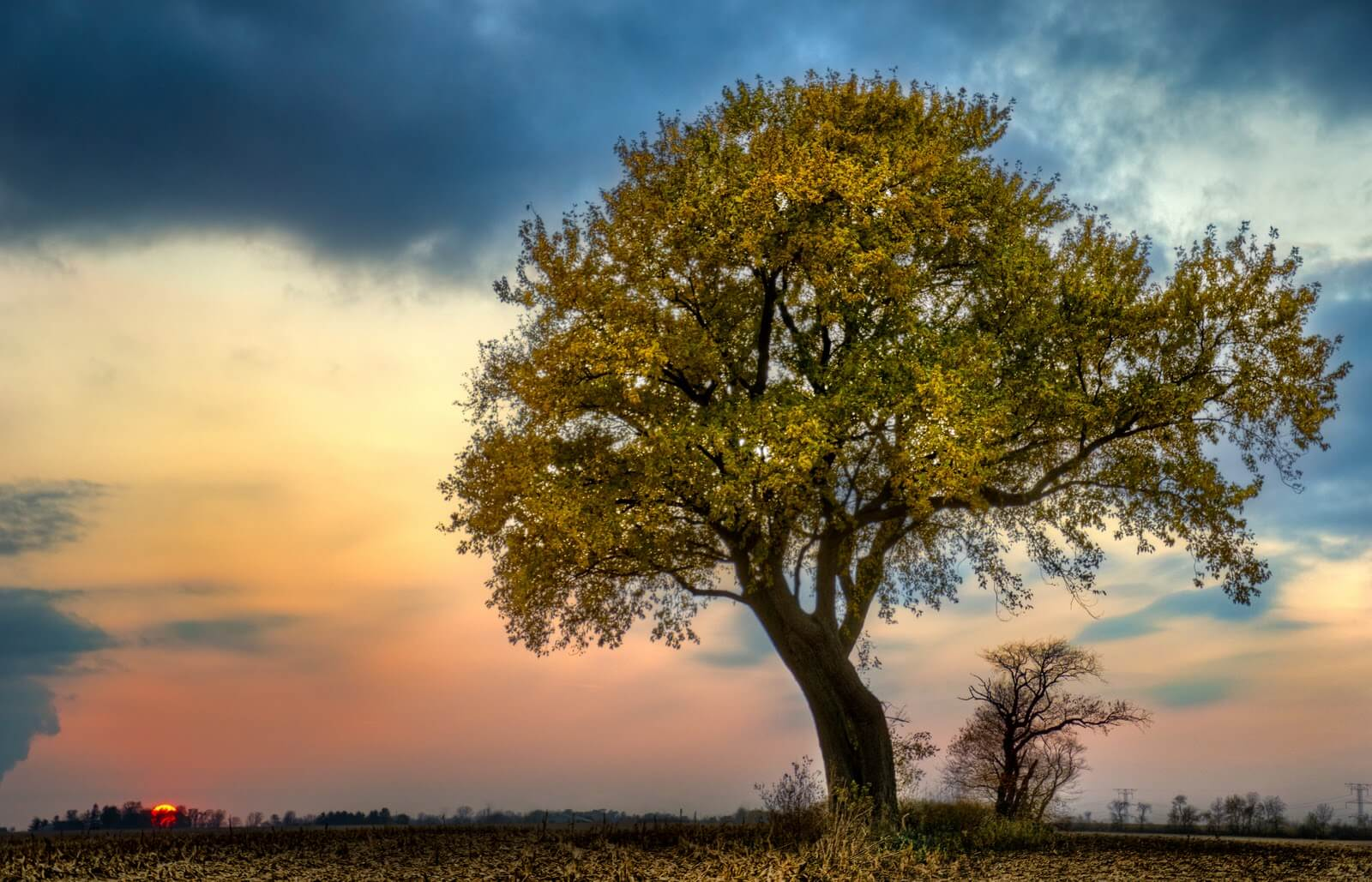 Here Are 12 Stunning Illinois Sunsets Photos That Will Leave You In Awe