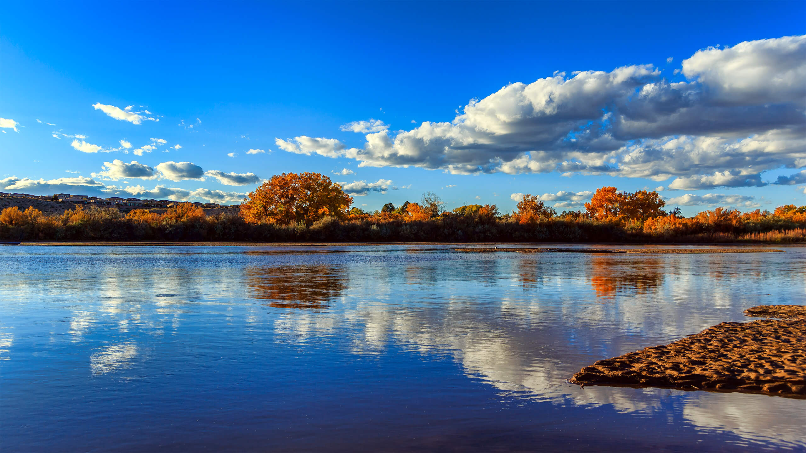The Rio Grande near Albuquerque, New Mexico - Photo by Grant Condit