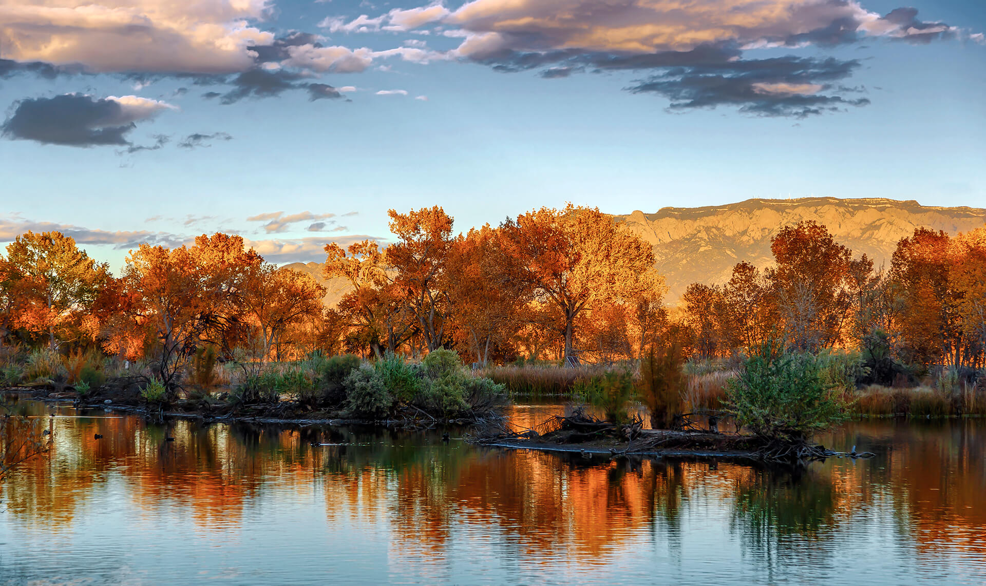 Fall in the Rio Grande Bosque - Photo by Grant Condit