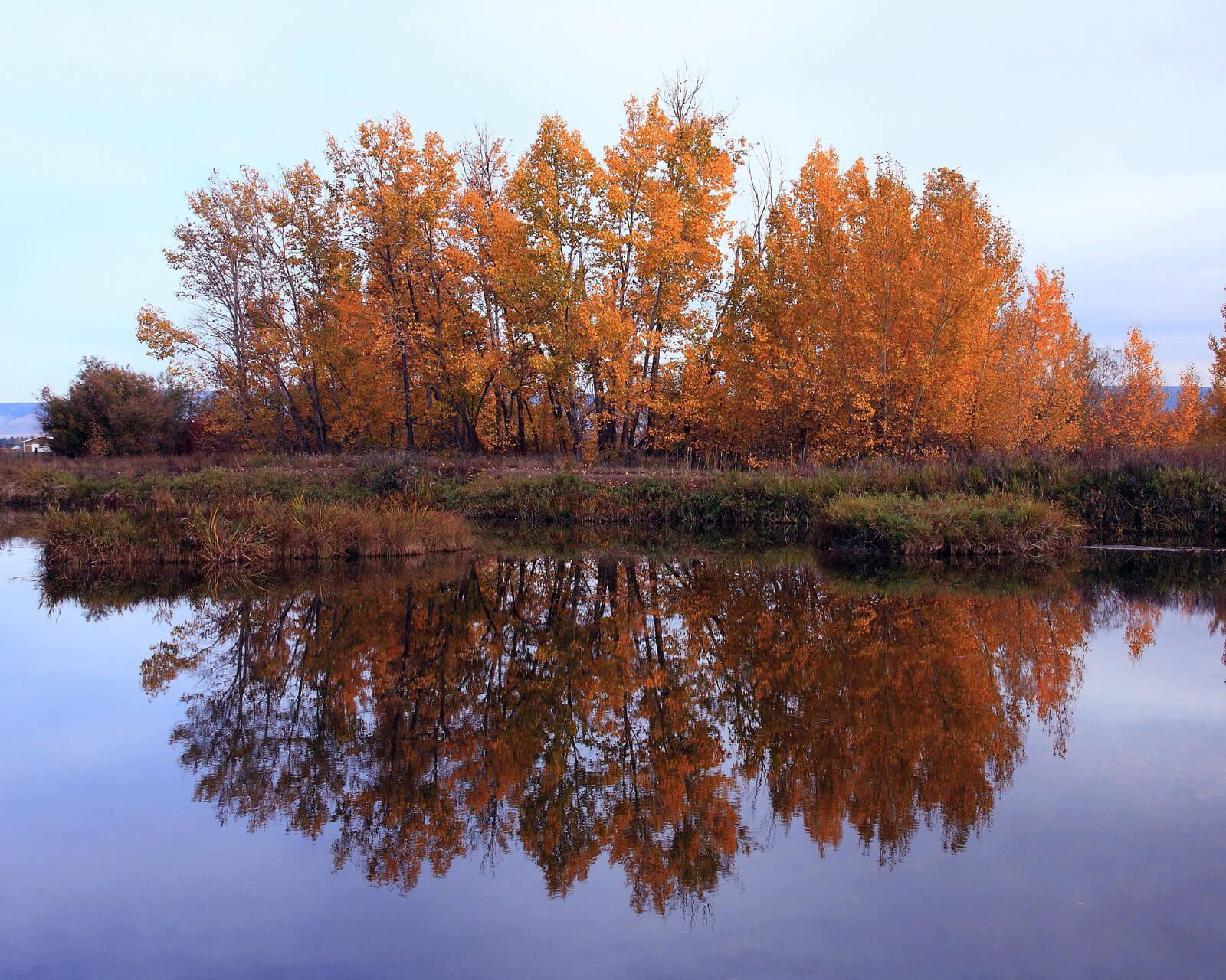 Woodhouse Ponds, Ellensburg in autumn - Photo by Jl Cummins