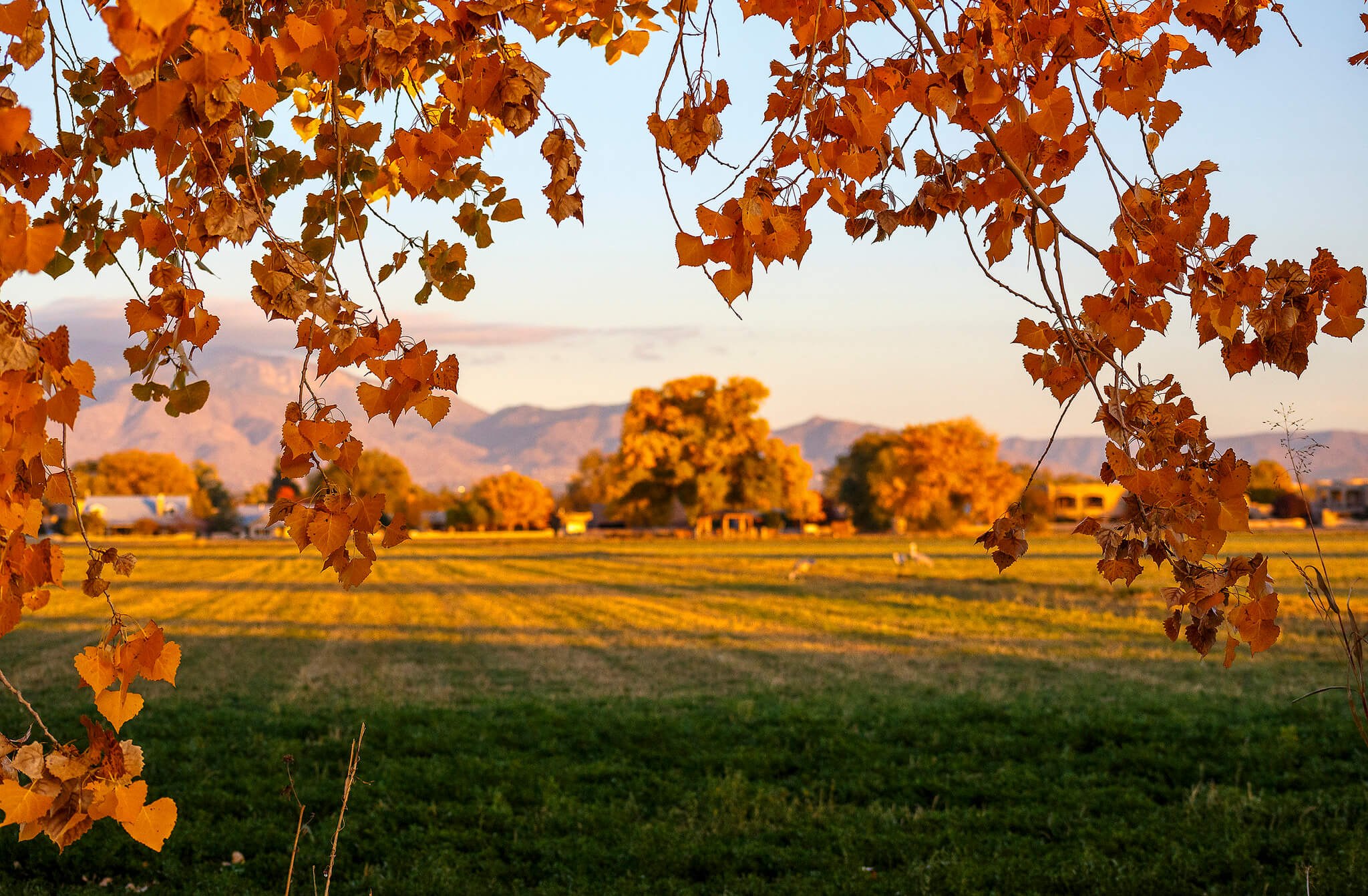 Los Poblanos farms near Albuquerque, New Mexico - Photo by Grant Condit