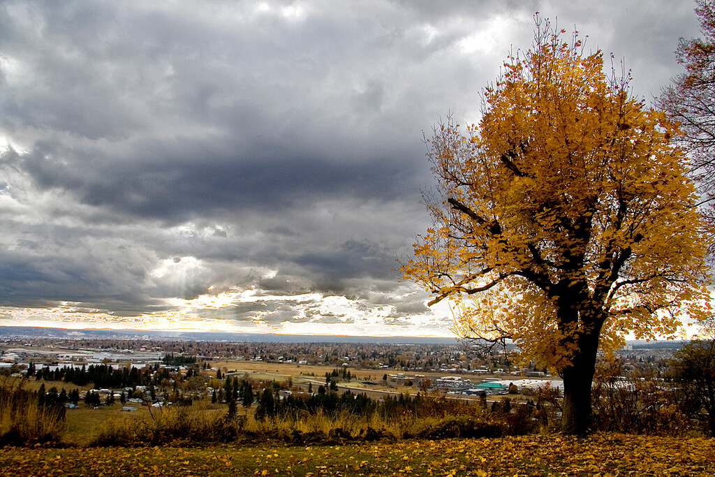 Autumn in Mead, Washington - Photo by Jibby!