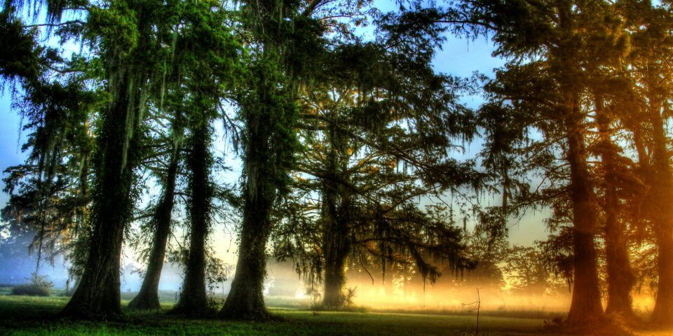 Lakeview, New Orleans, Louisiana - Photo by Bryan Quigley