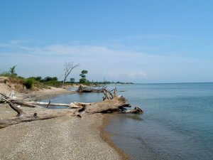 illinois_beach_state_park_lakefront