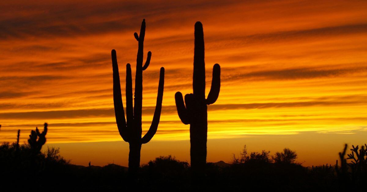 10 Incredible Facts About Arizona That You Should Know