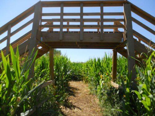Wagners Farmland Experience