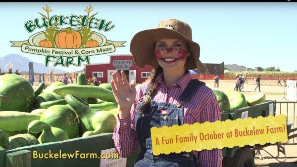 Buckelew Farm Pumpkin Festival & Corn Maze in Tucson, Arizona