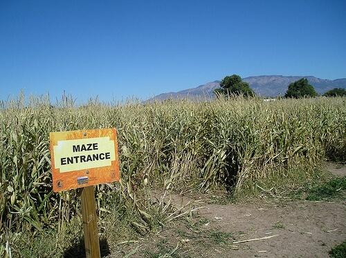 Maize Maze in Albuquerque, New Mexico