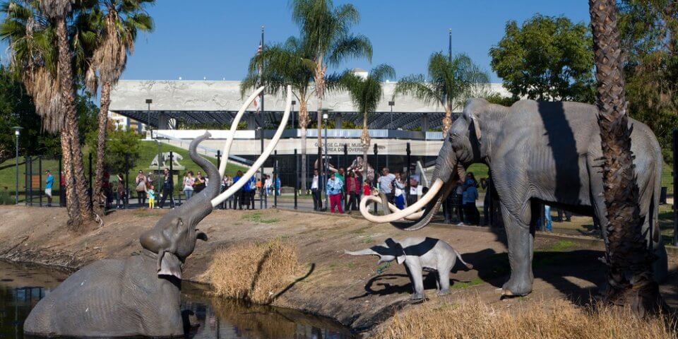 Mastodons stand outside at the La Brea Tar Pits.