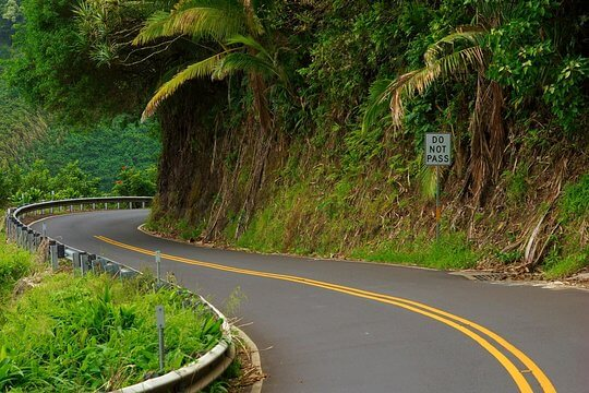 Jurassic park style road to hana on maui