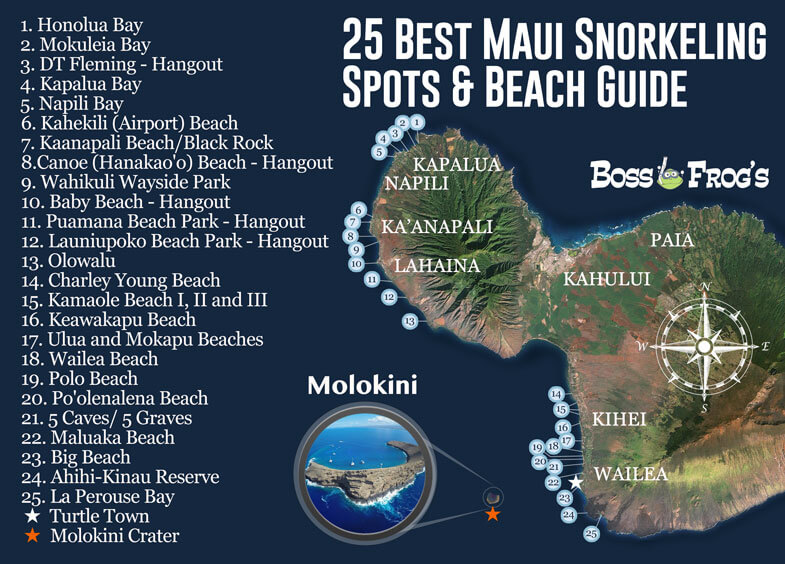 25 BEST Maui Hawaii Snorkeling spots and beach guide