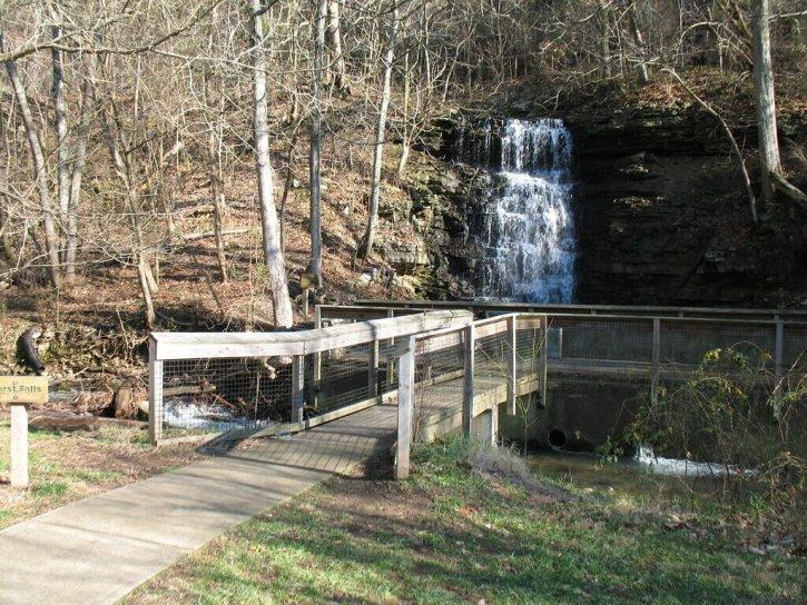 Cove Springs Park
