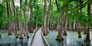 16 Best Things to Do in Mississippi