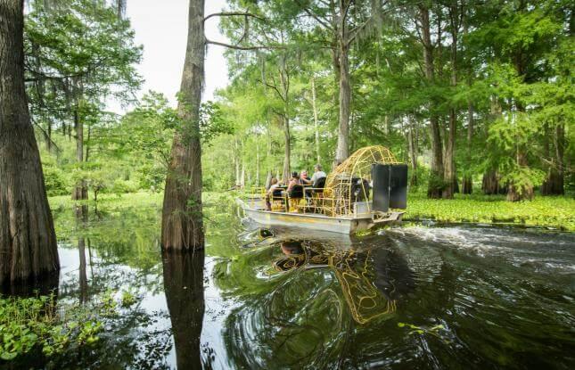 Louisiana Swamp Tour Airboat