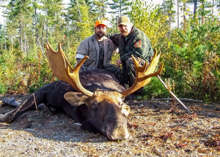 Moose Hunting in Maine