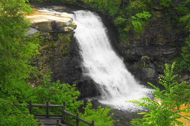 Muddy Creek Falls Swallows Falls State Park