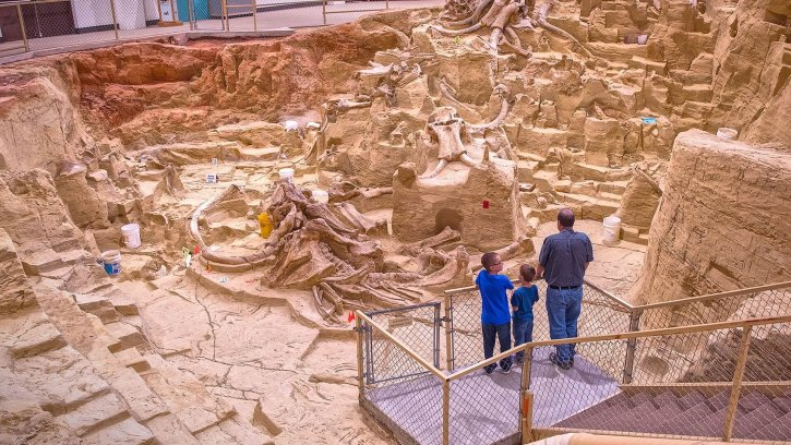 The Mammoth Site Excavation