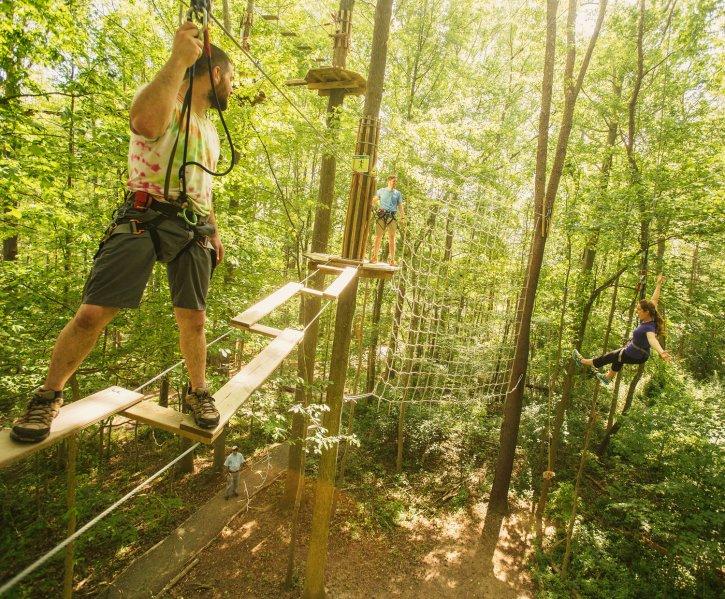 Tree Top Adventure at Go Ape