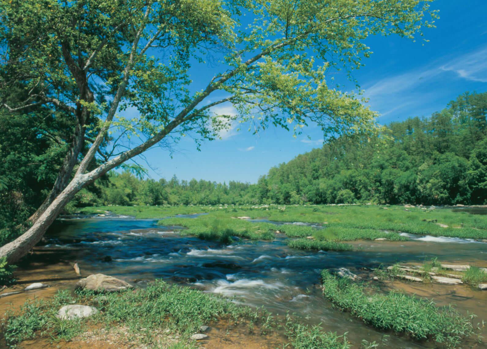 Cahaba River, Alabama