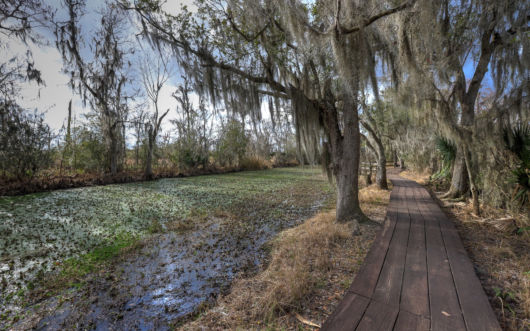 Jean Lafitte National Park, Louisiana