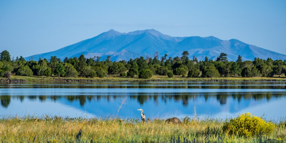 Ashurst Lake is 20 miles south of Flagstaff. It's one of the very few natural lakes in Arizona.