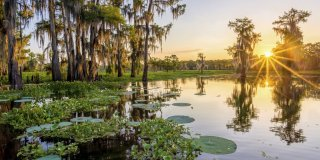 6 of the Most Beautiful Places to See in Louisiana