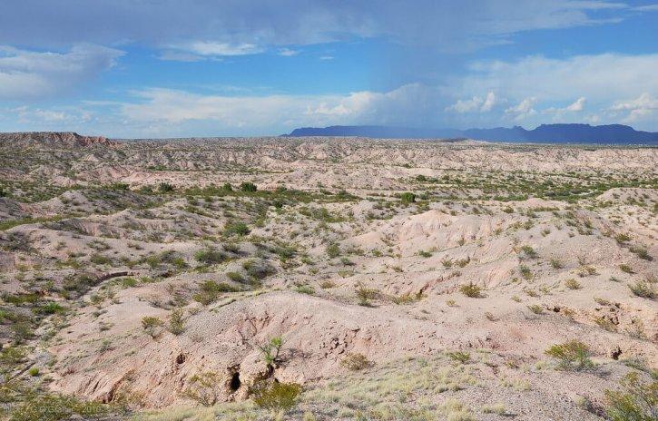 Chihuahuan Desert Arizona
