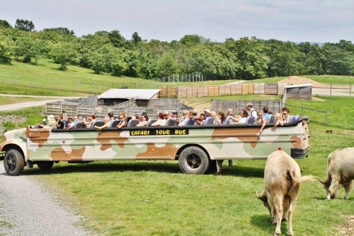 Lake Tobias Wildlife Park Tour Bus