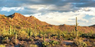 You Need to Visit These Top 3 Places in Arizona Before You Die
