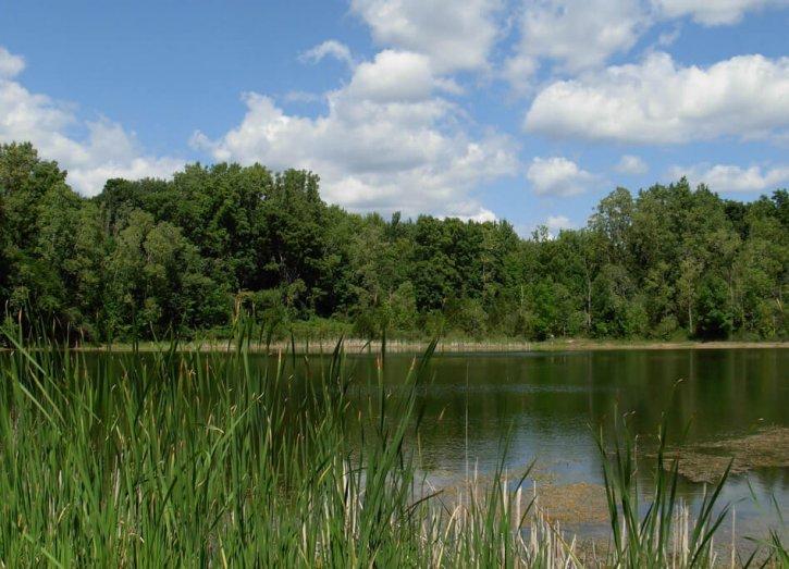 Valhalla Park