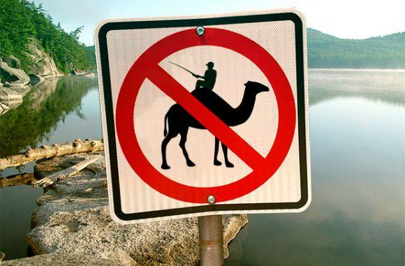 illegal to fish from camels back