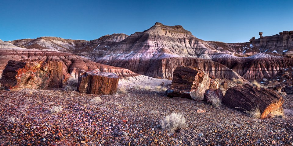 The Petrified Forest National Park is one of the national parks in Arizona still open during the coronavirus.